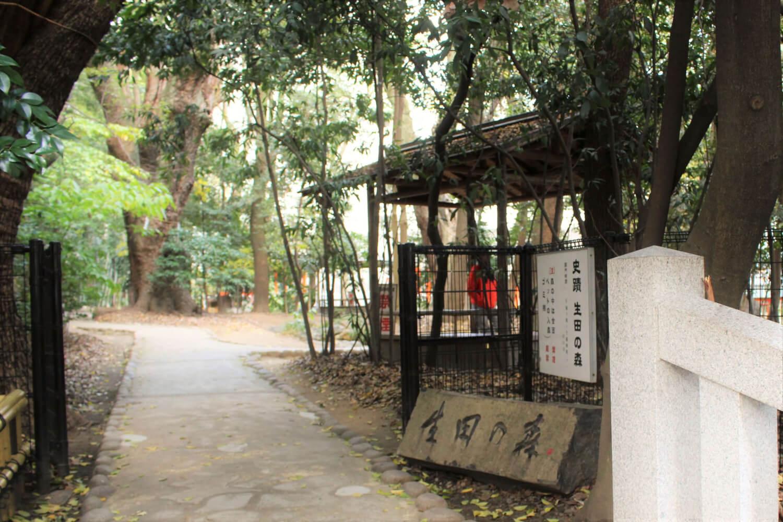 「生田の森」の入り口