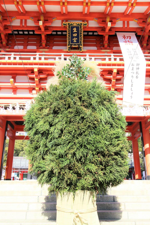 生田神社の正月の杉盛り
