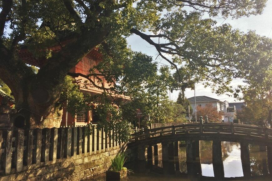 トヨタマ姫を御祭神とする佐賀市の「与賀(よが)神社」