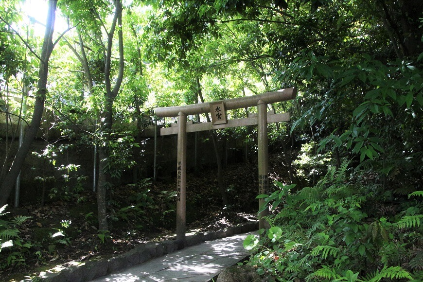 照國神社の水神地へ進む鳥居