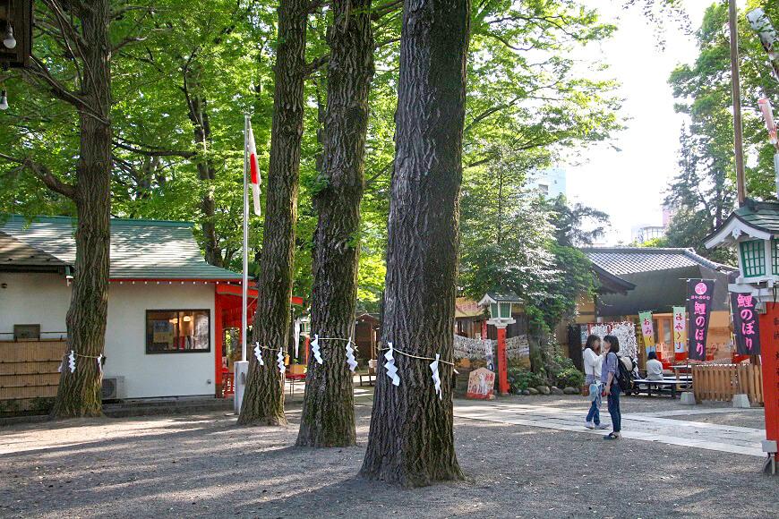 老若男女が訪れる田無神社