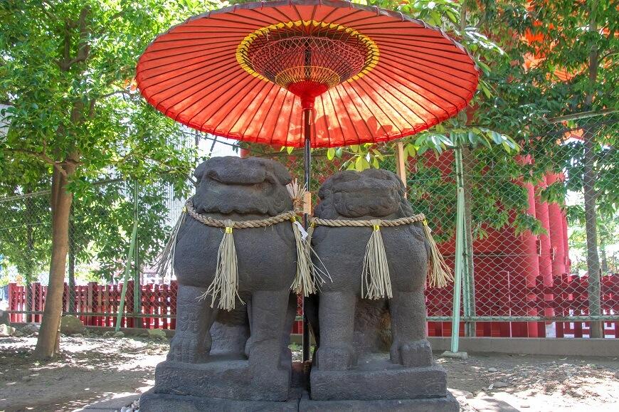 浅草神社境内にいる夫婦狛犬