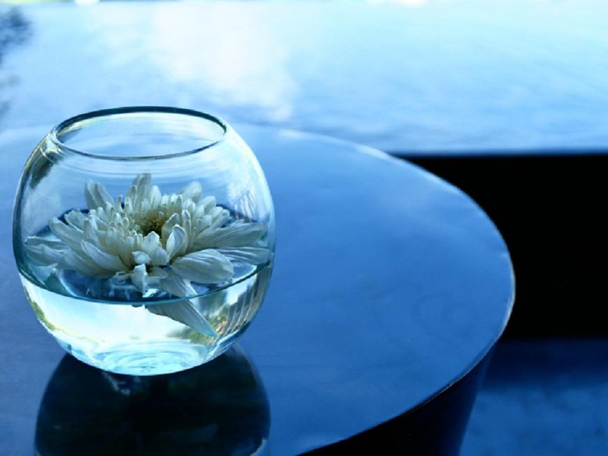 グラスに菊