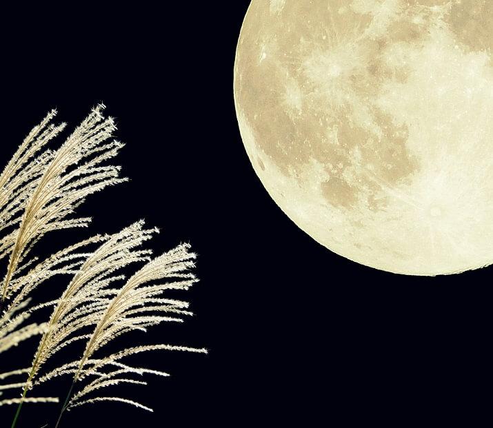 今年の中秋の名月はいつ?月の神様を知ってもっと満月を楽しもう