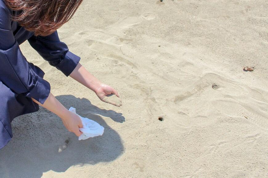 浜辺の砂を採る