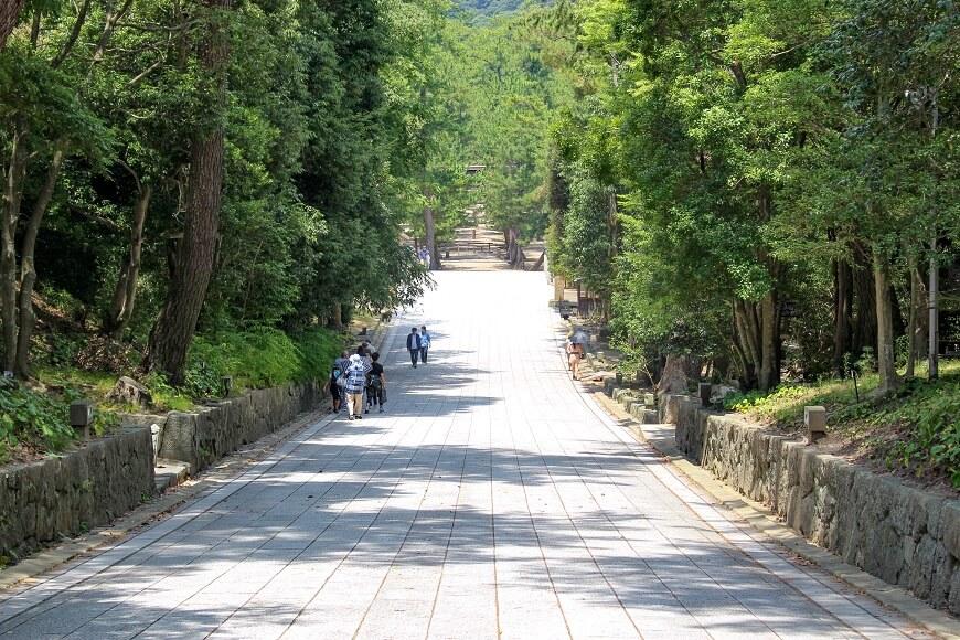出雲大社の表参道は、全国的に珍しい下り参道