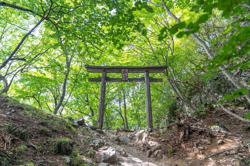 三峯神社の奥宮へと続く登山道の鳥居