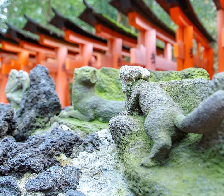 7割の人が知らない?お稲荷さん、稲荷神社の神様はキツネではありません