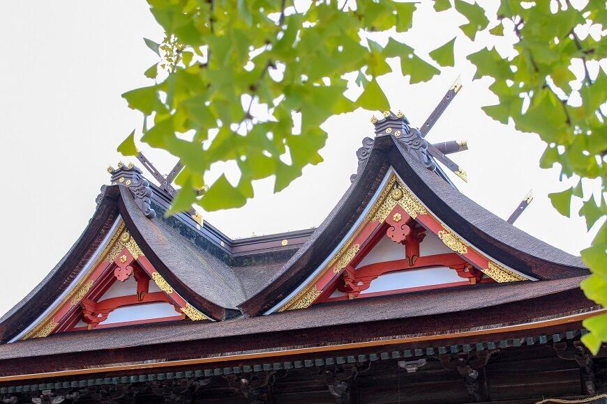 吉備津神社の御社殿と御神木の銀杏の木