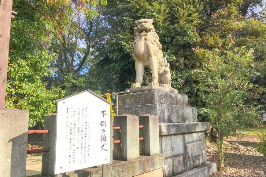 福井県護国神社の狛犬は「最強」である
