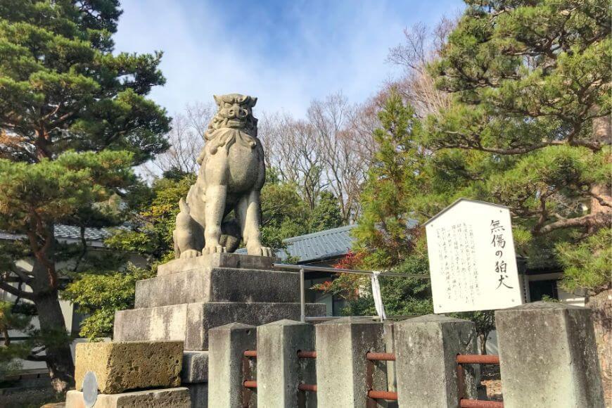 福井県護国神社の無傷の狛犬